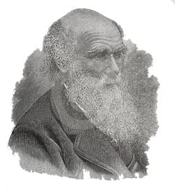 Charles Darwin and Social Media?
